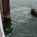 Oil seeping from USS Arizona