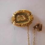Wake pins 018