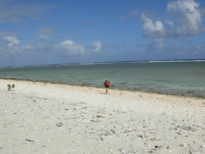 Peale seashore