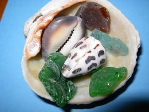 Wake shells and sea glass