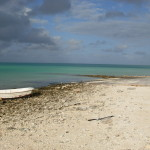 Peale lagoon shore